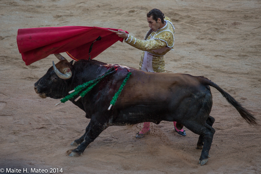12 de Julio de 2014. Pepe Moral al natural. © Maite H. Mateo