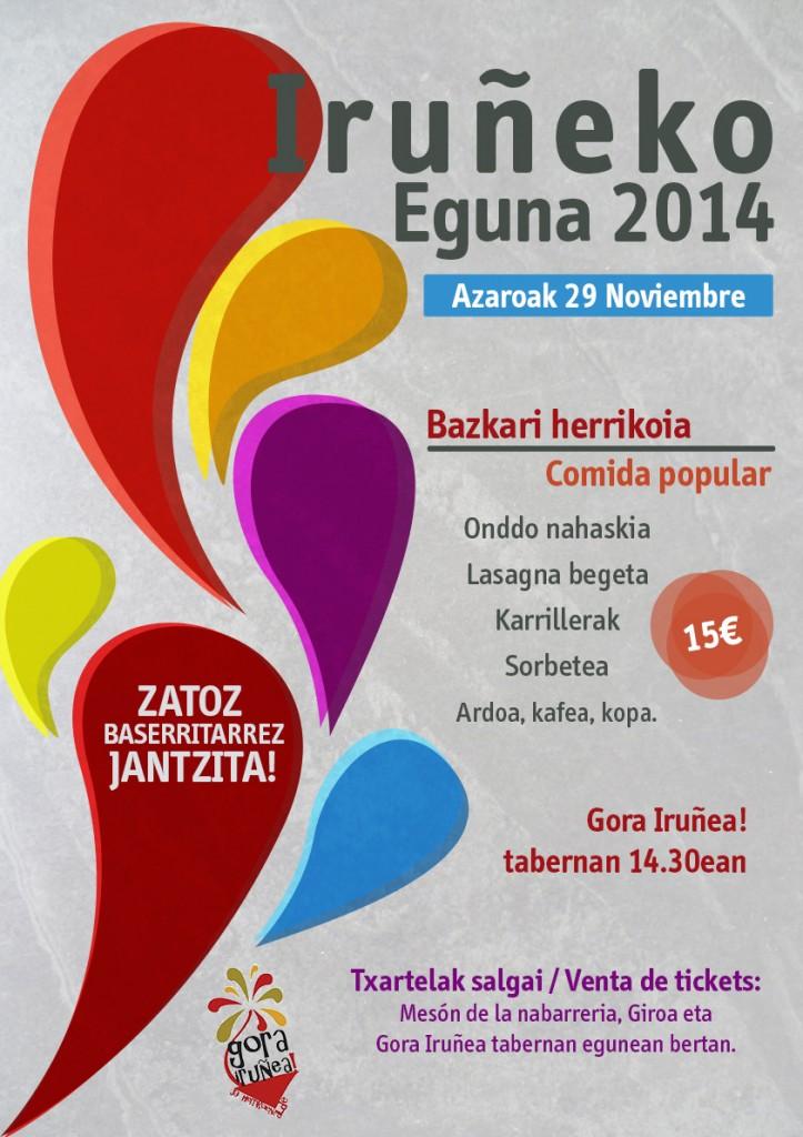 Iruñeko Eguna 2014