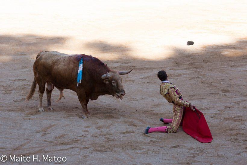 Feria del Toro 2016. Maite H Mateo.