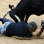 © REUTERS / Susana VeraReuters photographer Joseba Etxaburu is knocked down by a wild cow during festivities in the bullring following the sixth running of the bulls of the San Fermin festival in Pamplona July 12, 2012. Etxaburu suffered some scratches on his right elbow but was able to continue shooting afterwards.