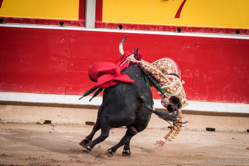Seria cornada de Roca Rey en la corrida de Sanfermin 2016.