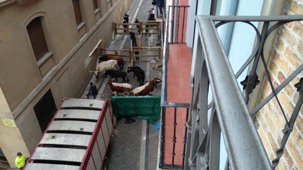 Corrales improvisados junto al Ayuntamiento de Pamplona en Santo Domingo.