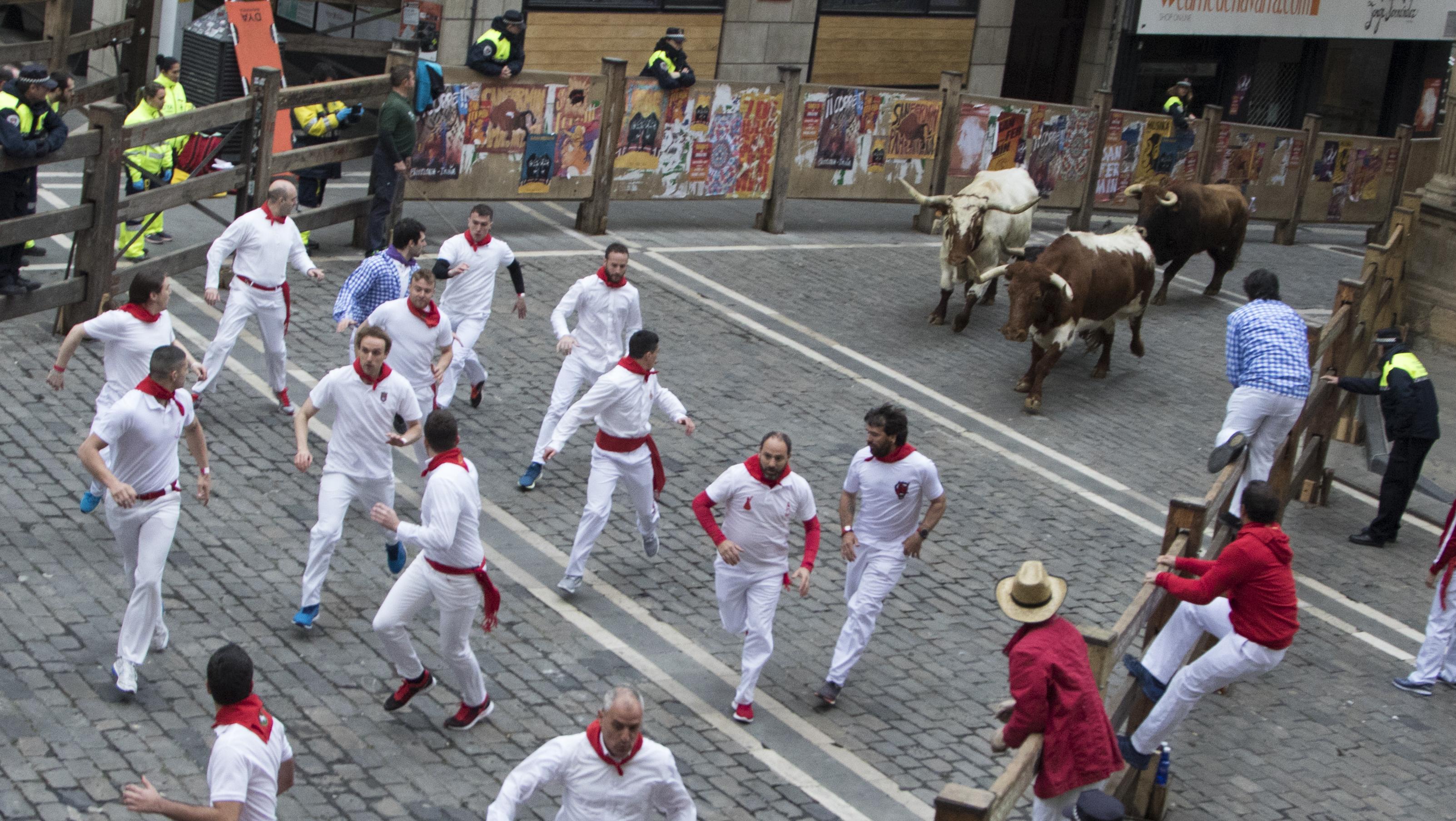 La manada entra en la plaza consistorial un 17 de marzo. Increíble, pero cierto.