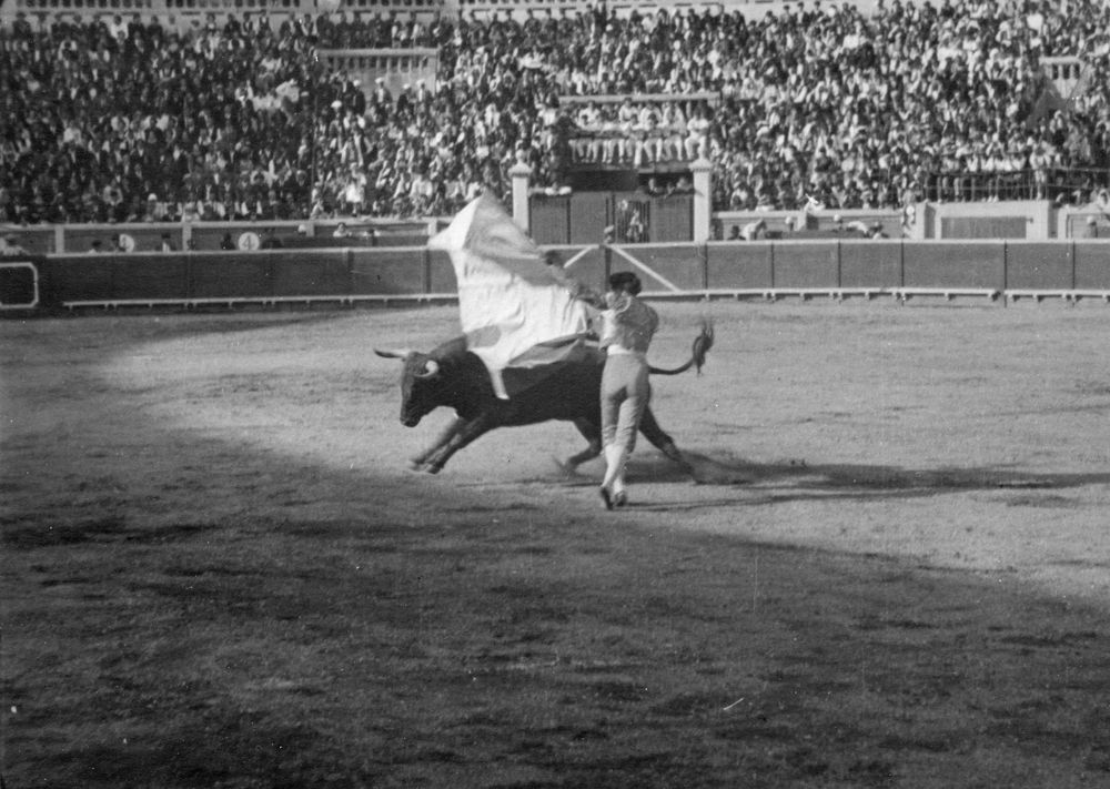 A torero fights a bull in Pamplona, Spain. Ernest Hemingway attended the bullfight as part of the Fiesta de San Fermín at the Plaza de Toros de Pamplona.