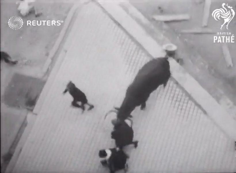 Cogida de un toro escapado del encierro de Pamplona